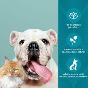 MENS SANA Stimolante psico fisico per cani e gatti