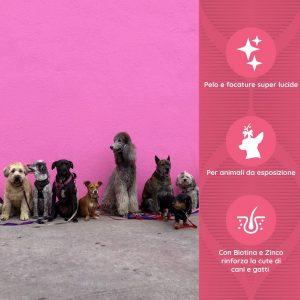 BIOTIN Zn Complex per pelo e cute di cani e gatti