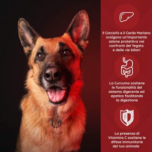 FEGAPET Benessere del fegato di cani e gatti