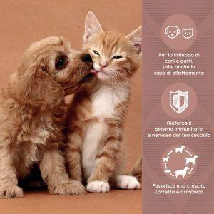 GROWY Crescita e sviluppo di cani e gatti