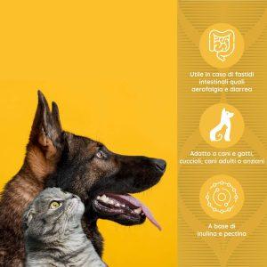 PROBIOT Azione protettiva intestinale per cani e gatti